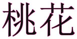 桃花,風水,命理,八字,紫天元社,心靈,算命